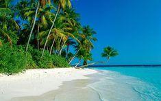 Come And Join :  Ad World Aruba :)