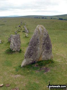 Walk Picture/View: Stone Rows near Yellowmeade Farm in Dartmoor, Devon, England by Bob Gordon Devon England, Dartmoor, The Row, Garden Sculpture, Battle, Bob, Stones, Outdoor Decor, Rocks