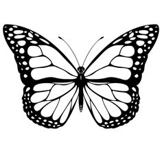 Print Monarch Butterfly Coloring Page coloring page & book. Your own Monarch Butterfly Coloring Page printable coloring page. With over 4000 coloring pages including Monarch Butterfly Coloring Page . Butterfly Outline, Butterfly Clip Art, Butterfly Pictures, Butterfly Template, Blue Butterfly, Printable Butterfly, Butterfly Design, Butterfly Wings, Butterfly Stencil
