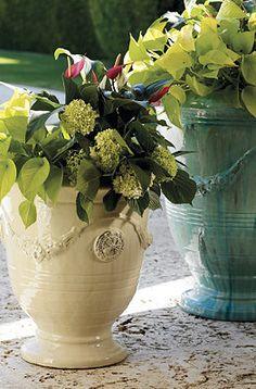 Classic Anduze Planters.