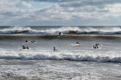 From @shrinkage.cup  Registration closes tomorrow weather looks  & numbers are up: all we need are some  for a perfect Shrinkage Cup 6. Spectators encouraged-- Lawrencetown Beach at noon on the 31st.      #dolphinsurfcraft #kracka #wetizlifesaving #lwc2018 #usla #halifax #explorens #explorecanada #liveunstoppable #surfsports #surflifesaving #surf #lifeguard #jolyn #excelwetsuits #quiksilver #paddle #paddleboard #swim #brrr #cold #race #racing #sls #obslsc @pronepaddlers