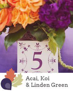 Pantone Fall 2013 Colour Report| Acai, Koi & Linden Green | Source: Stephanie Williams Photography