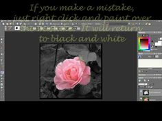 Paint Shop Pro Photo X2 Tutorial- Keeping Color in Black and White Pictures