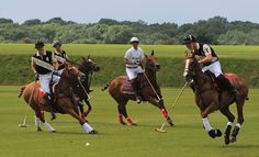 Watch a polo match...in the U.K somewhere!