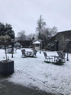 Snow in Hotel Kilkenny Outdoor Furniture Sets, Outdoor Decor, Snow, Home Decor, Decoration Home, Room Decor, Eyes, Interior Decorating