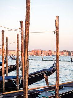 Parked Gondolas Venice