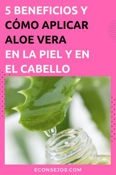 Aloe Vera - Beneficios y Propredades Beneficios Aloe Vera, Free To Use Images, Listerine, Forever Living Products, Tips Belleza, Home Remedies, Mascara, Health Tips, Fashion Beauty