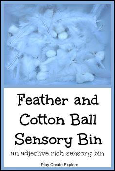 Feather and Cotton Ball Sensory Bin
