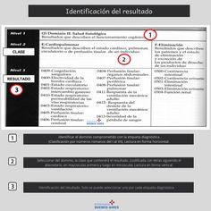 Pasos para el uso de la taxonomía NOC Buenos Aires