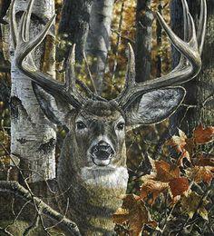12 beaux tableaux abraham hunter - Page 4