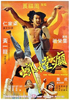 Modern Themed Martial Arts Movies