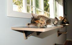 猫と暮らす人ならいつかは作ってみたくなるような、手作りキャットウォークの制作事例を集めました。