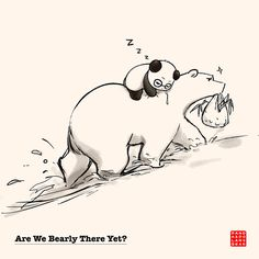 Are We Bearly There Yet?