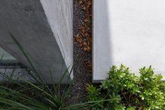 Hofhaus in Argentinien / Bäume zwischen Beton - Architektur und Architekten - News / Meldungen / Nachrichten - BauNetz.de