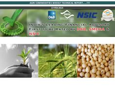 Epic Research private limited have india's best technical research team, Our research team provide Weekly report on agri commodity, You can get Everyday Favorable Tips & future Strategy for  Dhaniya, Castorseed and Chana