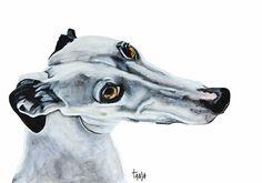Spanish Greyhound Galgo Español  Pele Art print by TanjaOnTheWall, €20.00