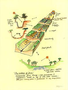 Halprin's Notebook: Page 3