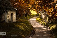 Wine cellars in autumn light by ReinhardMittermaier Rainbow Photography, Fine Art Photography, Nature Photography, Austria, Autumn Lights, Pinterest Images, Autumn Nature, Wine Cellars, Vivid Colors