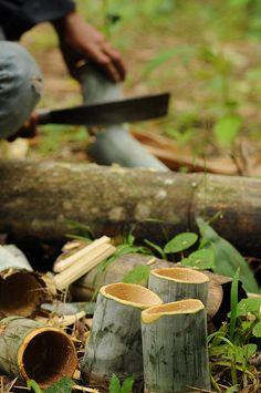 Bamboo teacups.                                                                                                                                                                                 Mais