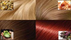 Many women dye the hair with special hair color. To be able without fear change hair color, we suggest turning to natural ways of dye. We`ll show you how to dye your hair naturally,. Change Hair Color, Color Your Hair, Hair Colour, Whipped Coconut Oil, Color Del Pelo, Color Rubio, Golden Blonde Hair, Dark Blonde, Light Blonde