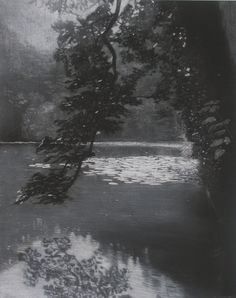 """<span class=""""artist""""><strong>Sheila Clarkson</strong></span>, <span class=""""title""""><em>Reflections at Abbot Pool</em>, 2014</span>"""