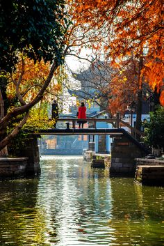 Autumn Scenes, Shanghai, Asia, Europe, Explore, Landscape, Water, Gripe Water, Scenery
