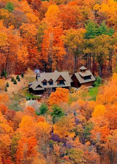 MIchigan in Fall | Eric C. Wilhelm.