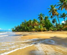 8 Ideas De Mi País Paises Playa República Dominicana