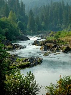 North Umpqua River, Oregon. Visit one of Oregon's most beautiful rivers. Renowned for outstanding salmon and steelhead fishing and exhilarating whitewater challenges, the North Umpqua River offers an ideal setting for many recreational pursuits.