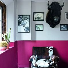 Like the idea of painting half a room with a bright colour. Like moulding/wainscoting but vibrant!