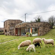Stone+wine+cellar+in+Spain+converted+into+a+home+by+Cubus+Arquitectura