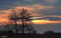 Zonsondergang in Noord-Limburg