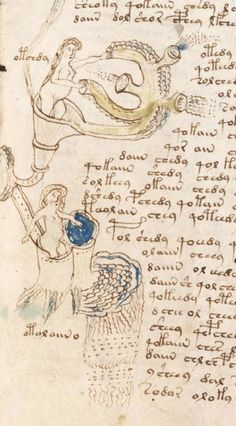 Voynich Manuscript. Origin may have been Pakistan. Landa, Khojki and Brahmi languages are used throughout the book.