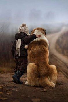 Every St Bernard needs a kid to love!