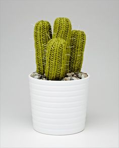 For my Arizona peeps...someone might get a homemade crocheted cactus!!