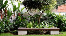 Jardim tropical com caminhos, pátio e fonte - Casa