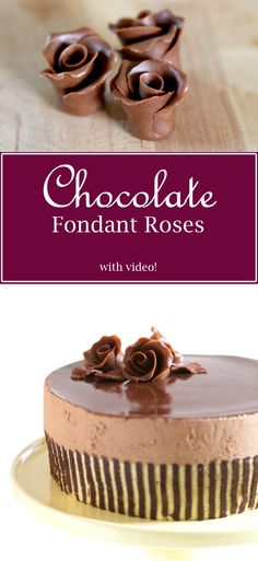 Chocolate Fondant Roses with video!