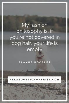 Our dogs are our best friends in the world without a doubt. Show your love and appreciation for these adorable doggos with these 21 inspiring dog quotes. John Grogan, Great Quotes, Inspirational Quotes, Jonathan Swift, Cesar Millan, Little Puppies, Bichon Frise, Unconditional Love, Love You More Than