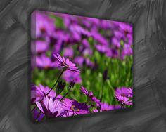 If you are looking for a great new way to have a true work of art in your home, canvas prints can be just the thing that you want. http://www.print2canvas.co.uk/canvas-art-store/Floral-Canvas-Prints.php
