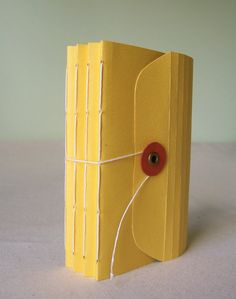 I recently took a beginner bookbinding workshop  with Melissa Chao of To Boldly Fold . It was so much FUN!!  A group of us gathered at her ...