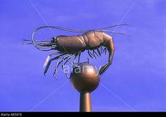 Bronze shrimp statue Southport, England Uk, Vintage Posters, Shrimp, Bronze, Statue, Art, Poster Vintage, Art Background
