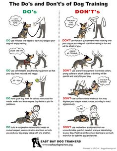 Do's and Don't's of dog training :)