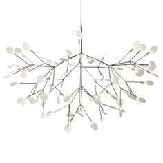 Heracleum II LED Suspension by Moooi-HAVE IT BOTH AS A PENDANT AND BIGGER OVER THE DINNING ROOM