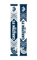 Carlton Blues Cropped Jacquard Scarf