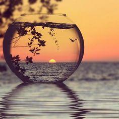 Sunset through glass