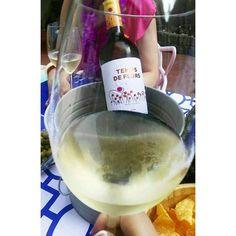 Vi blanc Sumarroca Temps de Flors  #winelovers #winelover #wine #whitewine #sumarroca #spring #tempsdelfors