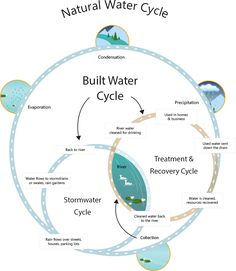 One Water Cycle | Clean Water Services