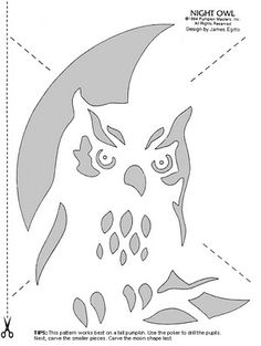 Owl pumpkin stencil! YES!