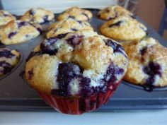 high altitude blueberry muffins « Red Pen Recipes