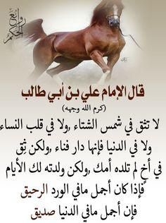 Arabic English Quotes, Islamic Love Quotes, Funny Arabic Quotes, Wisdom Quotes, Words Quotes, Life Quotes, Ramadan Kareem Pictures, Islam Beliefs, Islamic Phrases